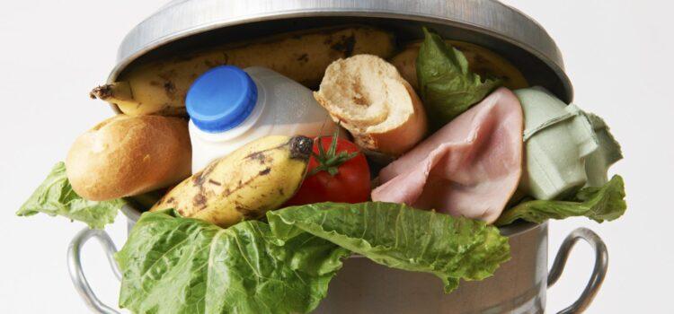 Economia Circolare: tecnologie avanzate per ridurre gli sprechi alimentari